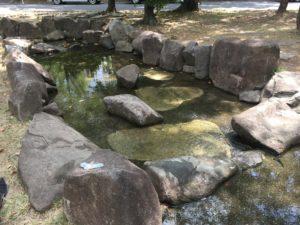 瑞穂・山崎川親水広場